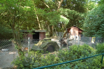 Zoo Saarbrücken 2012 040