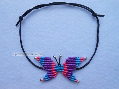 Papillon Version 4 (3)