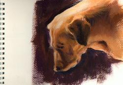 peintures et chiens