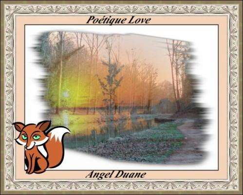 paysage-4-AD.JPG