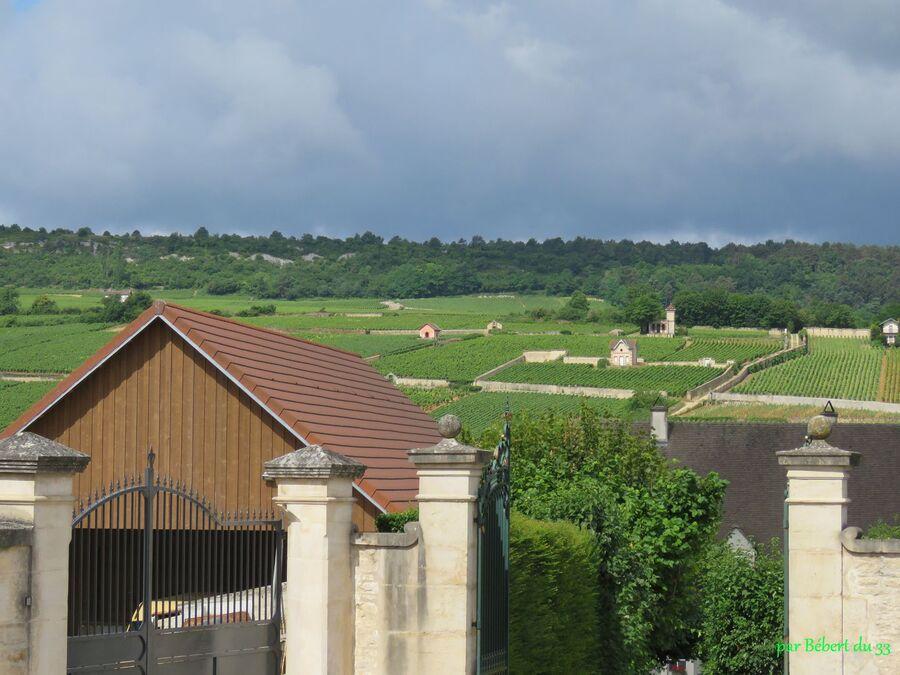 Meursault en Cote d'Or