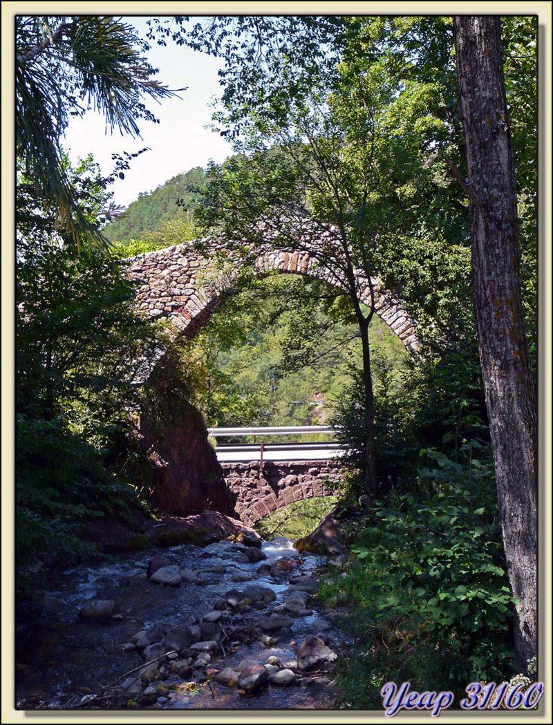 Pont génois sur le Rio Llobrégat - Castellar de N'Hug - Espagne