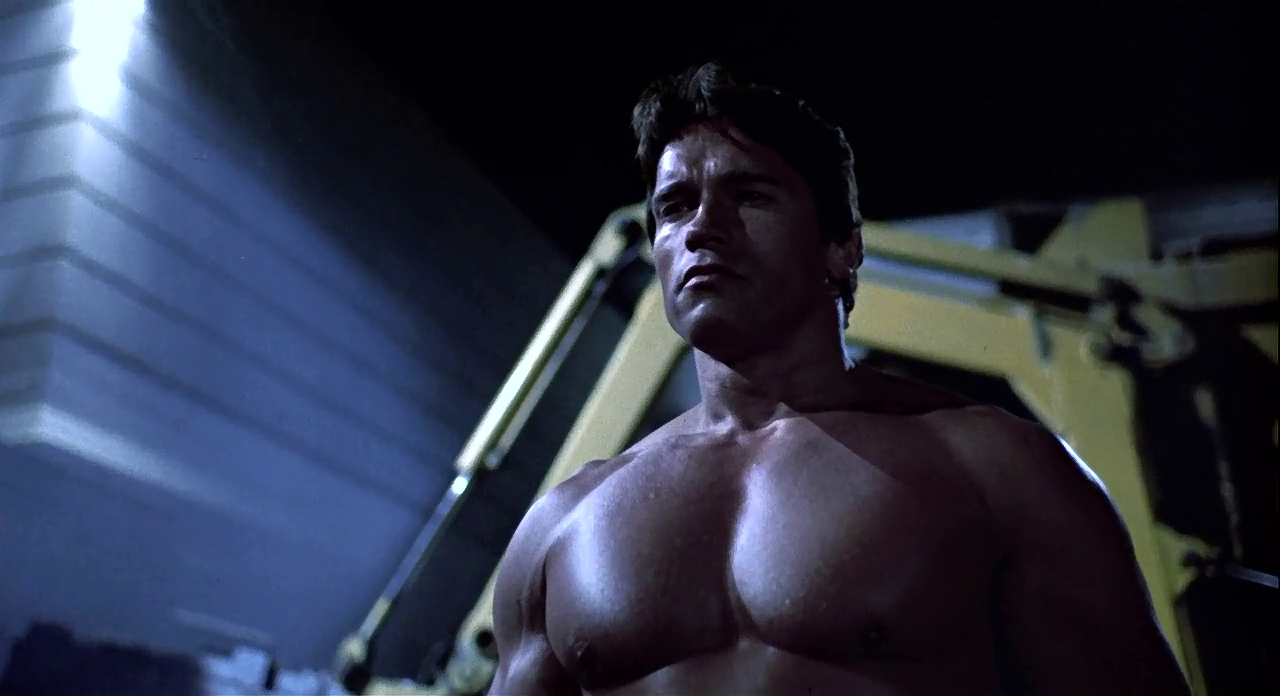 BOX OFFICE ARNOLD SCHWARZENEGGER 1985 PART I
