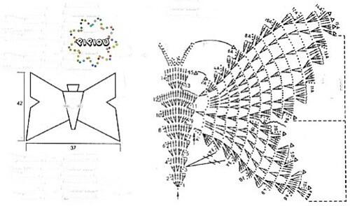 top papillon (1) copie