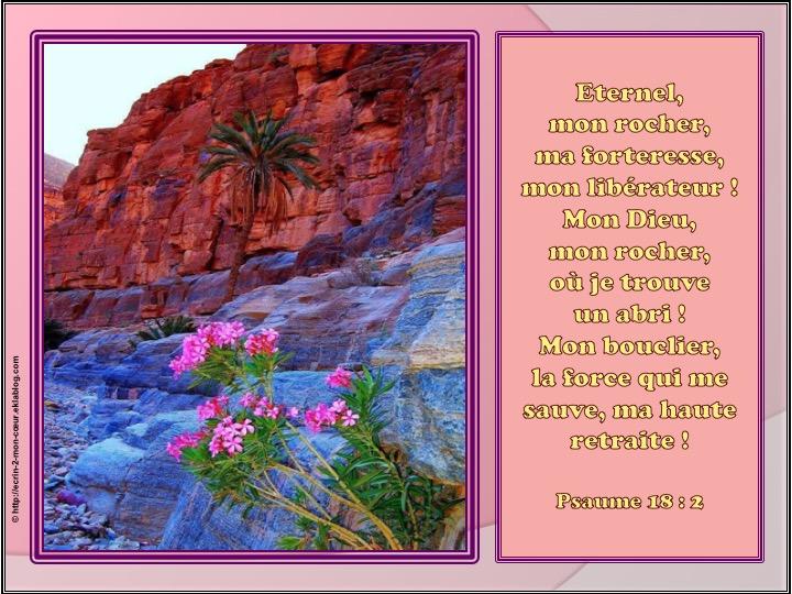 Eternel, mon rocher, ma forteresse, mon libérateur - Psaumes 18 : 2