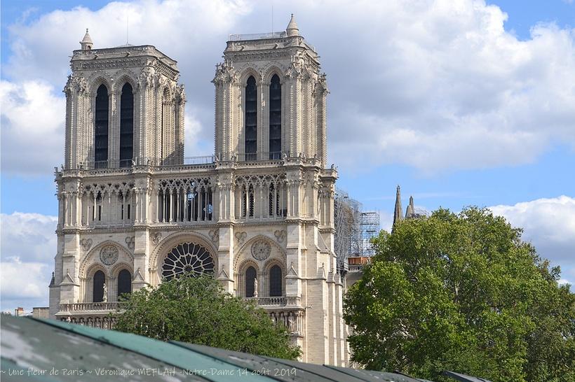 Notre-Dame de Paris : Dernières nouvelles ...