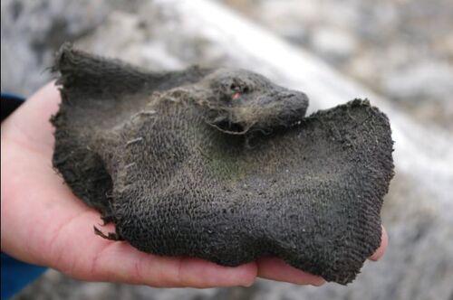La fonte des glaces permet la découverte de nombreux artefacts et d'une ancienne route vikings
