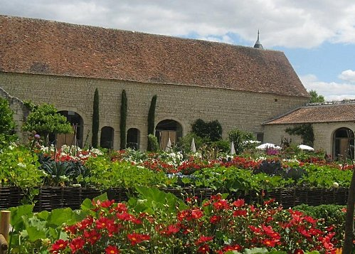 Chateau-du-Rivau--3-Potager-de-gargantua----21-07--copie-1.jpg