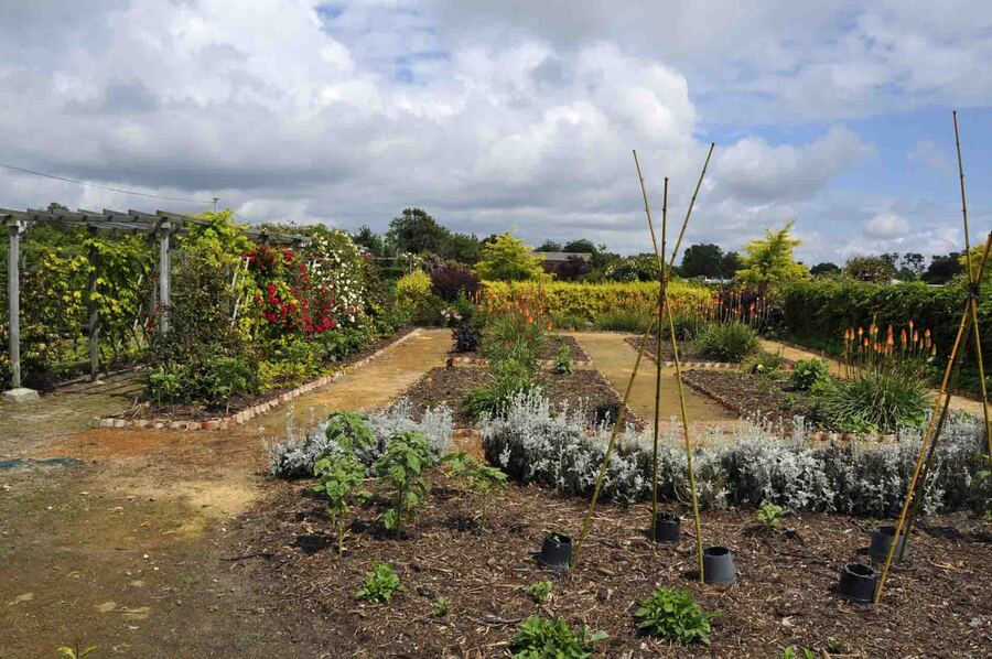 « Le jardin des Rigonneries 1»