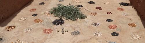 4 avril - Tinedjad - Musée des sources de Lalla Mimouna de  Zaïd Abbou