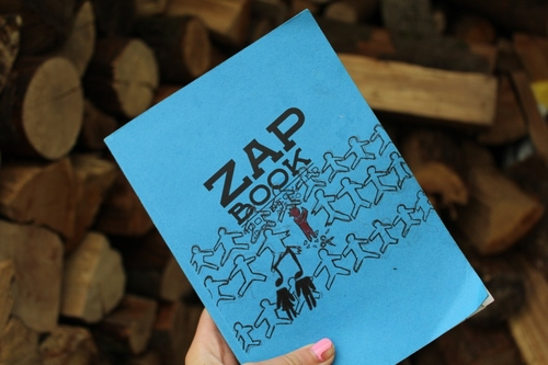 Son zap book