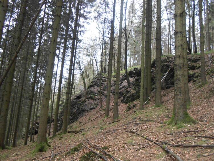 Ardennes-le ravin de l'ours