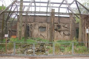 Zoo Osnabruck d50 2012 126