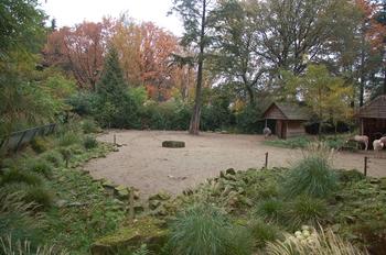 dierenpark amersfoort d50 2011 136