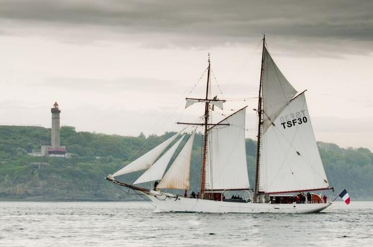 Les Aventuriers de la mer (suite)