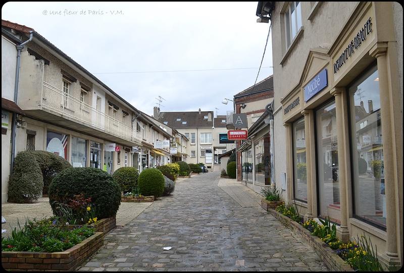 """Rambouillet : Enseignes et le """"Passage fleuri"""""""