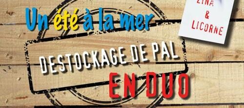 """Challenge """"Destockage de PAL en duo"""" organisé par Zina et Licorne #mission 3"""