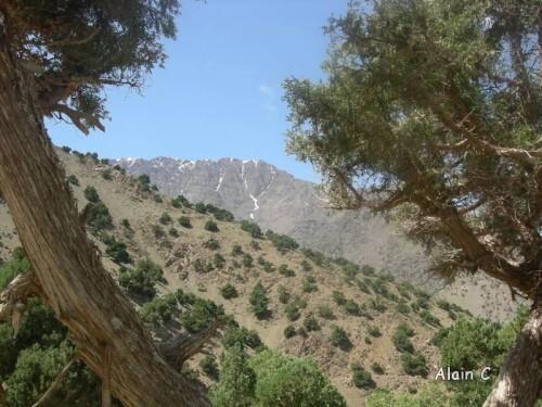 Massif du Toubkal Maroc 2011 104