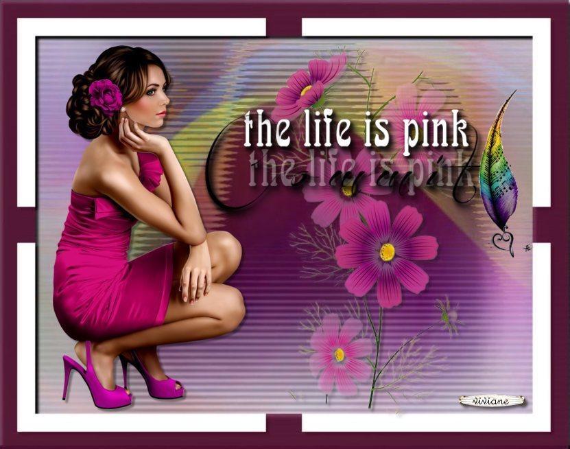 La vie en rose et l'abscence