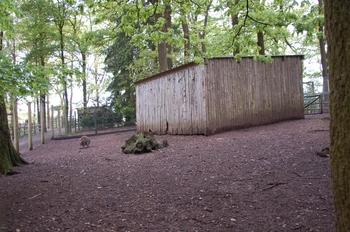 Parc animalier Bouillon 2013 enclos 232