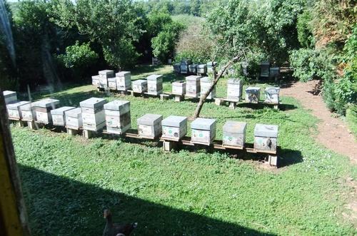 Sortie aux ateliers de l'abeille et au lac de Monampteuil