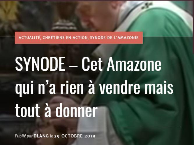 Synode Cet Amazone Qui N A Rien A Vendre Mais Tout A Donner E E Fraternite Ofs Sherbrooke Monde