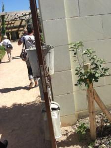 Terra Botanica 18 juillet 064