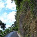 La route étroite vers Grand Rivière - Photo : Fritz