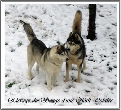 Thyron et Felya dans la neige