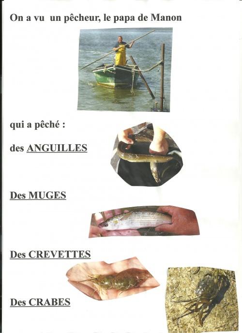 La pêche à l'étang de Peyriac de Mer