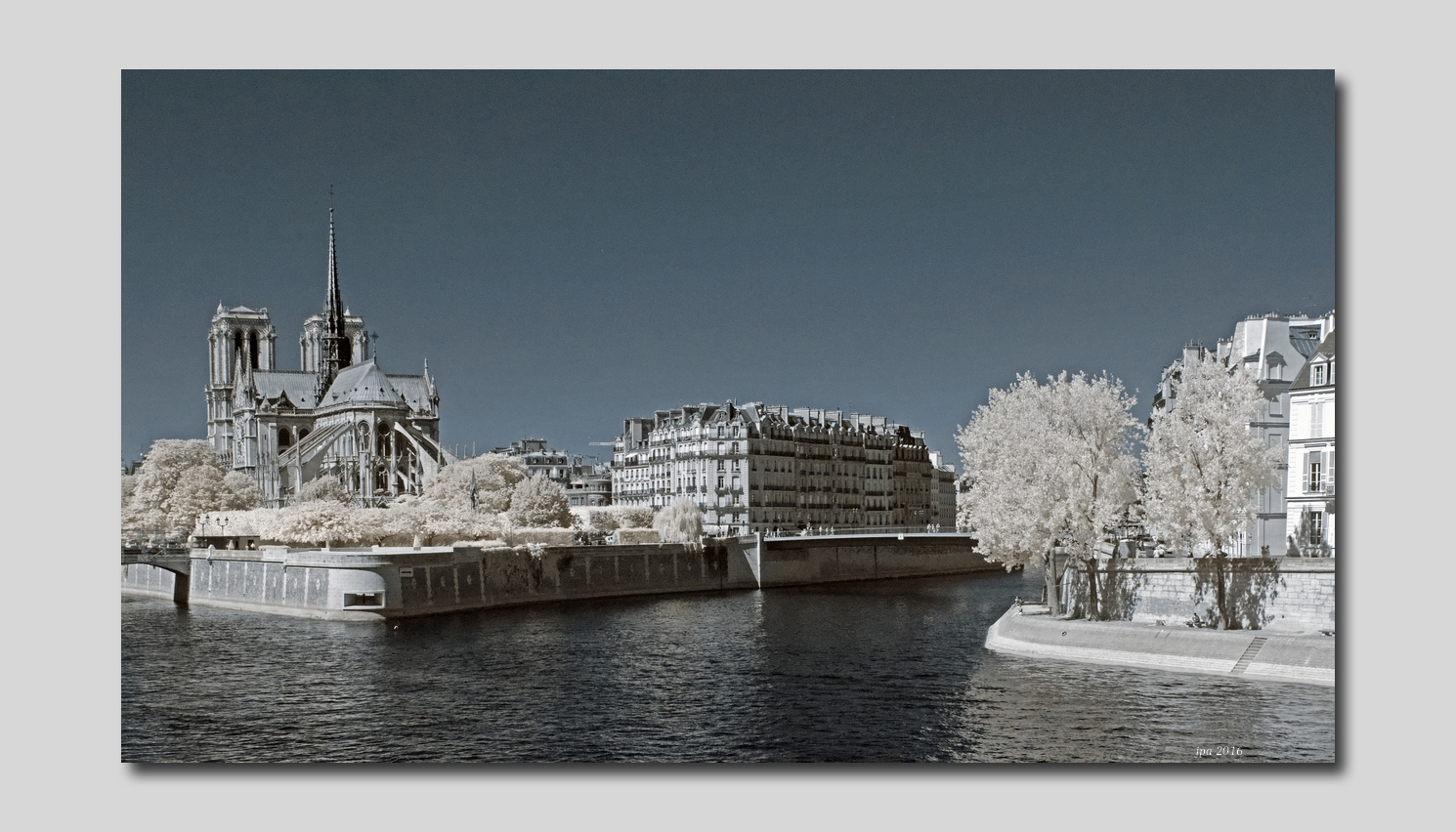 Notre Dame panoramique