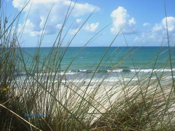 Fond d ecran mer et dune
