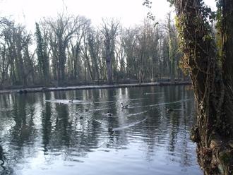 Balade au bord de l'étang