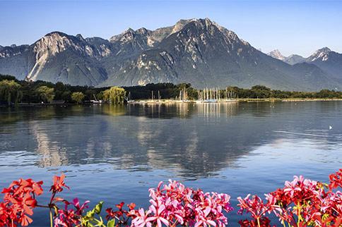 Bonjour.... au bord du Lac Léman