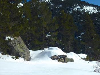 Un peu plus bas que le refuge, une cabane sommaire découverte - et utilisée - un jour d'orage en été (coucou Nicole et JL)