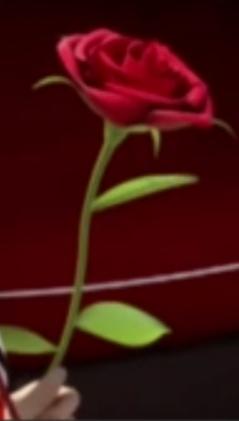 Les Roses D'Adrien