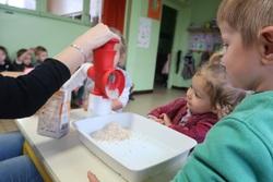 Petits de VIS : la recette de la galette (1)