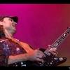 Scorpions vincendeau (41).jpg