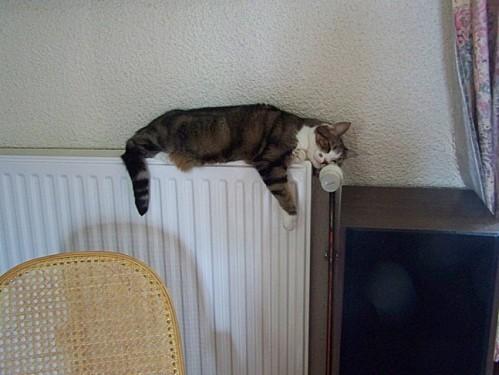 Mousse sur le radiateur fin oct 2012