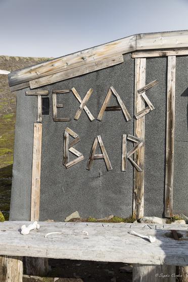 Croisière 8e partie - Texas Bar