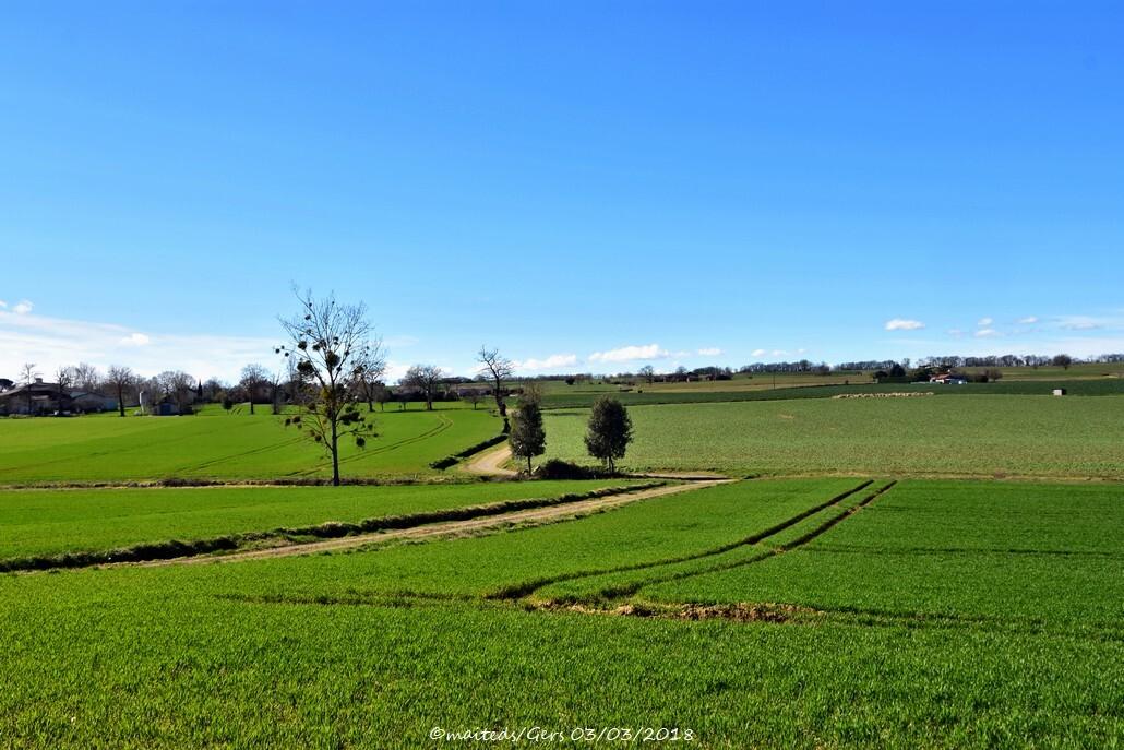 Paysage du Gers 03/03/2018