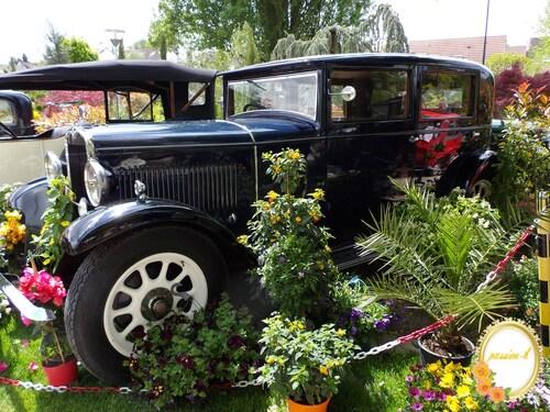 des fleurs et des voitures