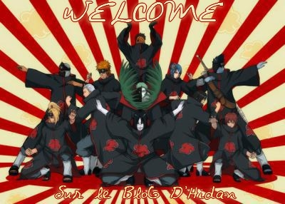 D.Gray Man Episodes 52 à 103 en Vostfr