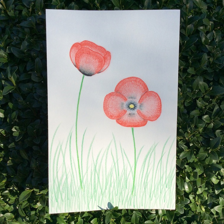 Smile up ! Dessin • Coquelicots simplifiés