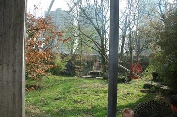 zoo cologne d50 2012 072