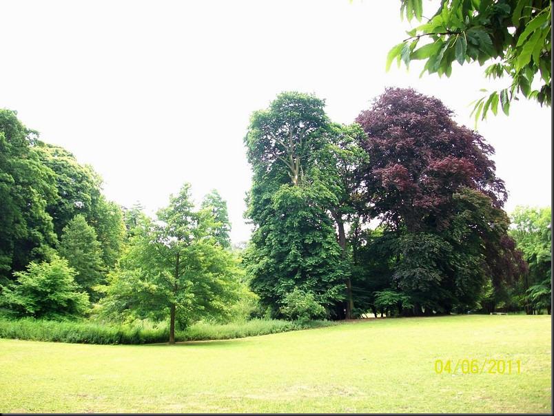 le parc arboretum de jumet056