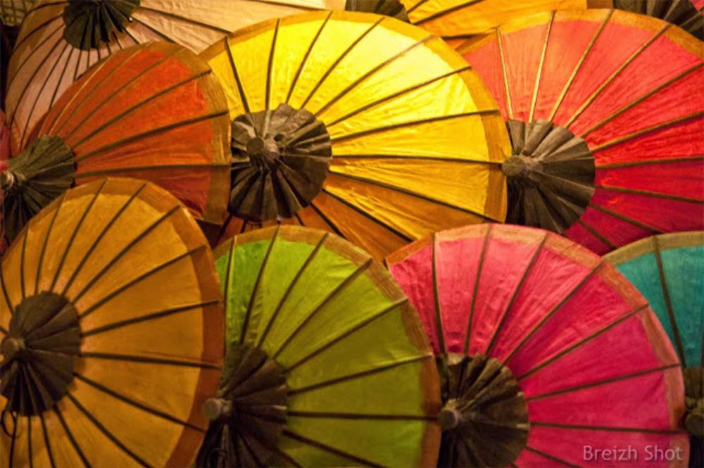 parasols en papier de Luang Prabang