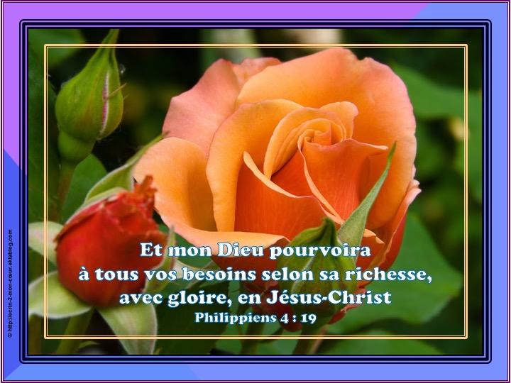 Dieu pourvoira à tous vos besoins - Philippiens 4 : 19