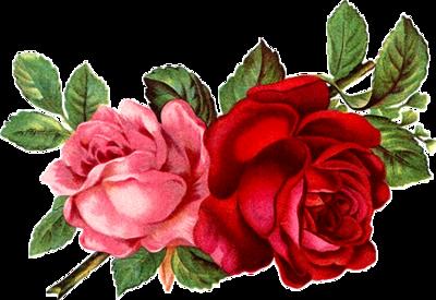 Fleur vintage 6