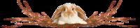 I Regalini di Buona Pasqua ricevuti dalle altre amiche di Web 2021